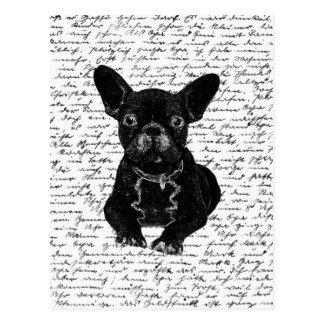 Dogo lindo postal