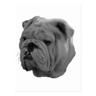 Dogo Postal