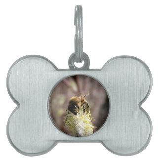 Donadora de polen de la abeja placa para mascotas