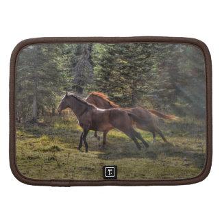 Dos caballos del rancho que corren en bosque planificador