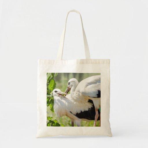Dos cigüeñas jovenes, fotografía del animal de los bolsa