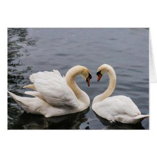 Dos cisnes blancos tarjeta de felicitación