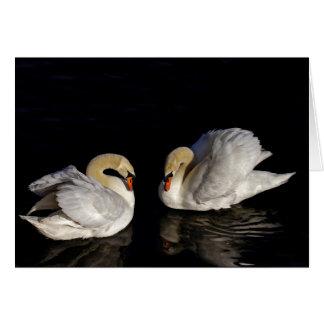 Dos cisnes negro y blanco tarjeta de felicitación