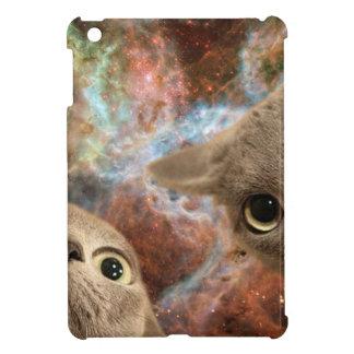 Dos gatos grises en espacio antes de una nebulosa