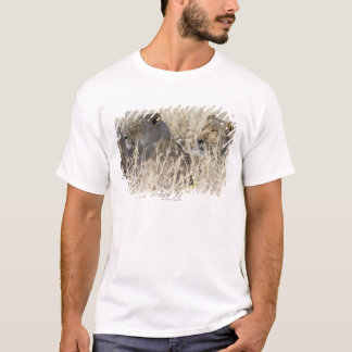 Dos leones ocultados en la hierba seca, nacional camiseta