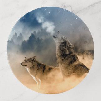 Dos lobos en el salvaje