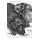 Dos perros mimosos que dibujan por el cisne de Kel Tarjeta