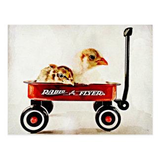 Dos polluelos del bebé en carro rojo tarjetas postales