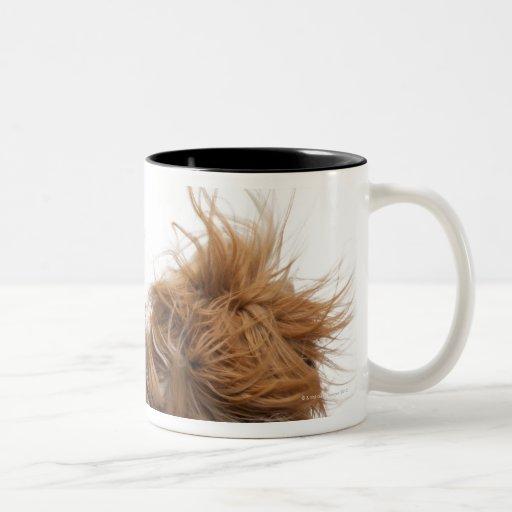 Dos Shih-Tzus en el viento Taza De Café