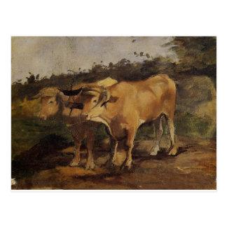 Dos toros que llevan un yugo de Enrique de Postal