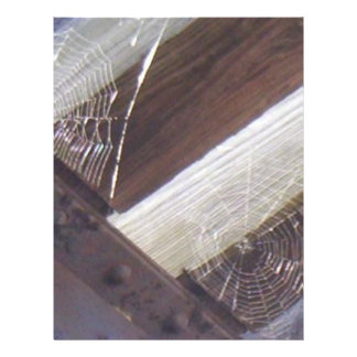 Dos Web de araña Tarjeton