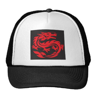 Dragón de China Gorros Bordados
