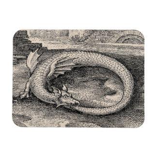 Dragón medieval de Ouroboros Imán Rectangular