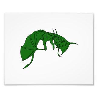 dragón verde que vuela outline.png fotografia