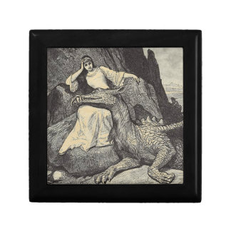 Dragón y doncella del mascota caja de regalo