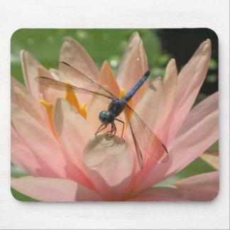 Drgonfly en lirio de agua alfombrilla de ratón