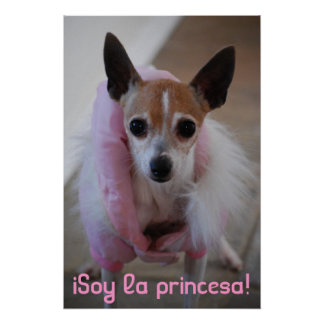 ¡DSC_0015, princesa iSoy del la! Poster