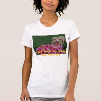 DSC_0699, tardan tiempo para oler las flores Camisetas