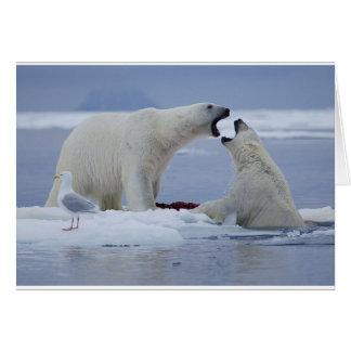 Duelo del oso polar tarjeta de felicitación