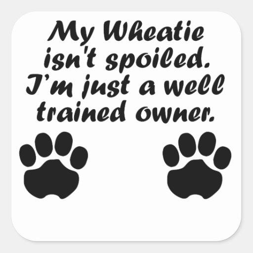 Dueño bien entrenado de Wheatie Calcomanía Cuadradase