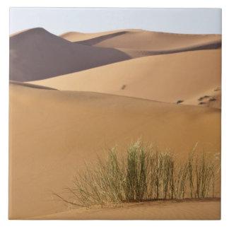 Dunas de arena, desierto del Sáhara, Marruecos Azulejo Cuadrado Grande