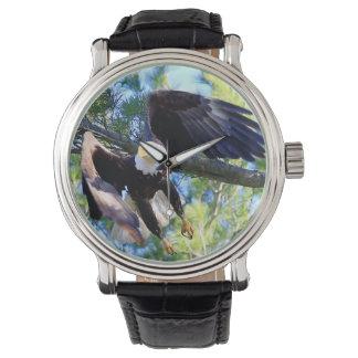 Eagle calvo americano relojes