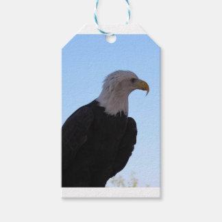 Eagle calvo etiquetas para regalos