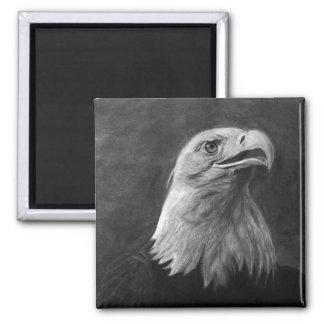 Eagle calvo grafito dibujado mano iman de frigorífico