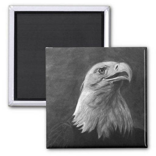Eagle calvo, grafito dibujado mano iman de frigorífico