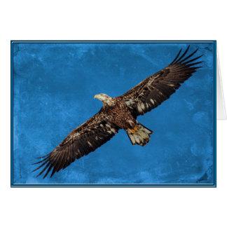 Eagle calvo juvenil en vuelo tarjeta de felicitación