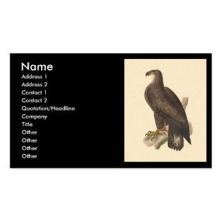 Eagle calvo (leucocephalus de Haliaetos) Tarjetas De Visita