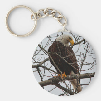 Eagle calvo llavero