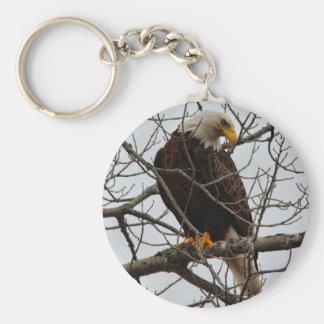 Eagle calvo llavero redondo tipo chapa