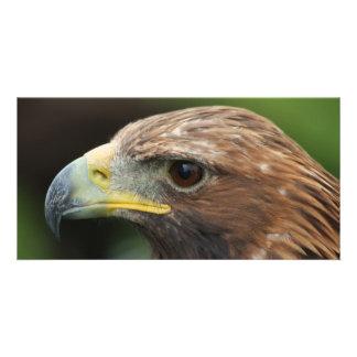 Eagle de oro tarjeta fotográfica personalizada