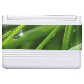 Eco-diseño verde herboso camuflado