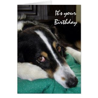 Edad avanzada no feliz, humor del cumpleaños con e tarjetas