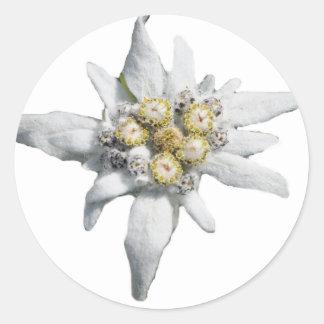 Edelweiss Pegatina Redonda