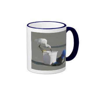 Egret nevado en un cubo del cebo taza