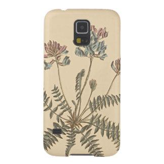 Ejemplo botánico de Milkvetch de la montaña Carcasa Galaxy S5