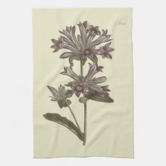 Ejemplo botánico del Bellflower agrupado Toallas De Cocina