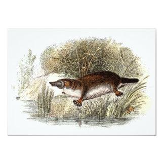 Ejemplo de Bill Platypus del pato de los 1800s del Invitación 11,4 X 15,8 Cm