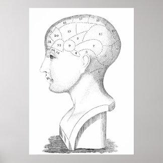 Ejemplo de la cabeza humana del vintage del poster póster