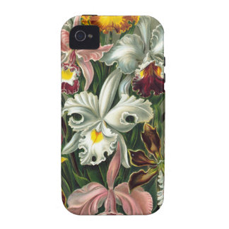 Ejemplo de las orquídeas del vintage Case-Mate iPhone 4 carcasa
