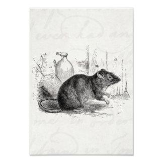 Ejemplo de las ratas de la rata del granero de invitación 8,9 x 12,7 cm