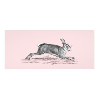 Ejemplo del conejo de conejito de las liebres del invitación