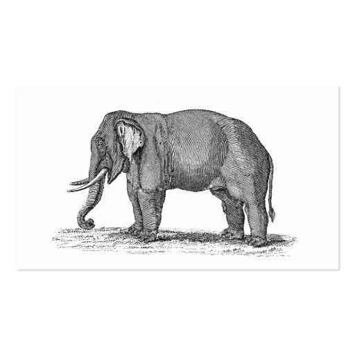Ejemplo del elefante de los 1800s del vintage - el tarjetas de negocios
