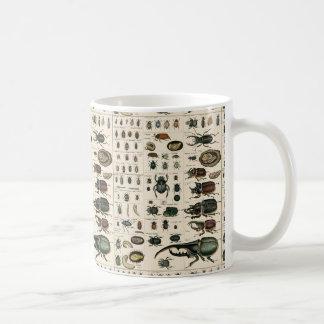 Ejemplo del escarabajo del vintage taza de café