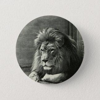Ejemplo del león chapa redonda de 5 cm
