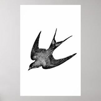 Ejemplo del trago del vintage - pájaro antiguo póster