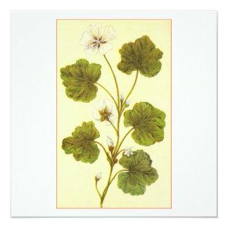 Ejemplo del vintage de la malva con hojas redonda invitación 13,3 cm x 13,3cm